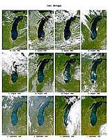 Lake Michigan in Bloom - selected image