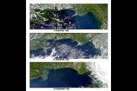 Aerosols Over U.S. Gulf Coast