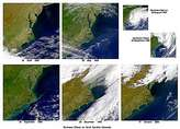 Effects of Hurricanes Dennis and Floyd in North Carolina - selected image
