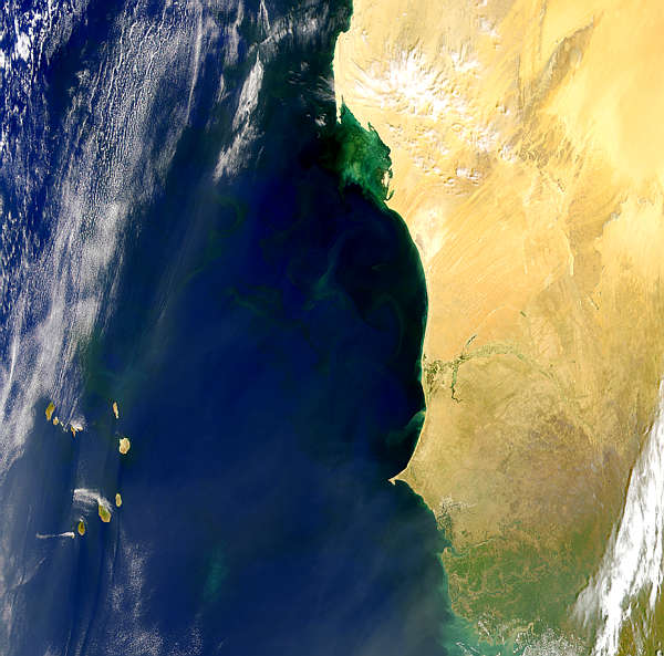Blooms and Plumes Off Western Africa - related image preview
