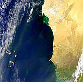 Blooms and Plumes Off Western Africa - selected image