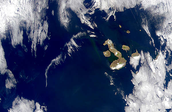 Galapagos Islands - related image preview