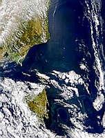 Tasmanian Eddy - selected image
