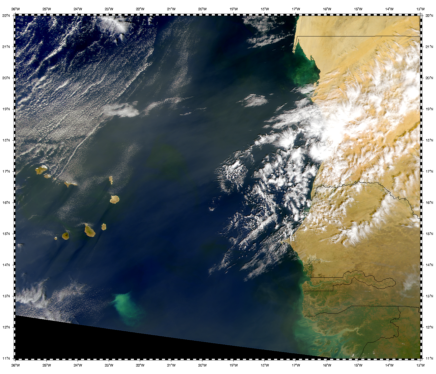 West African Bloom - related image preview