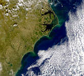 Carolina Coast - selected image