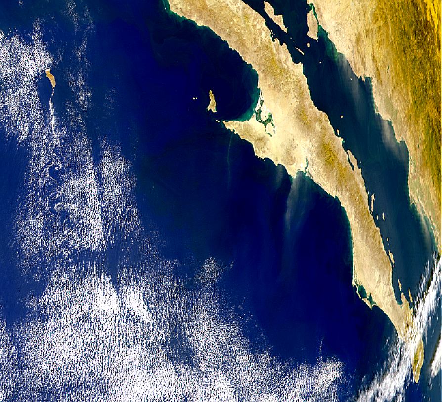 Mexican Dust and Vortex Street - related image preview