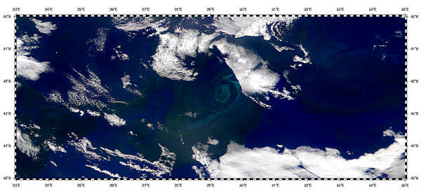 Blooms in the Agulhas Return Current - related image preview