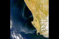South African Smoke