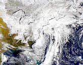 East Coast Snow Storm - selected image