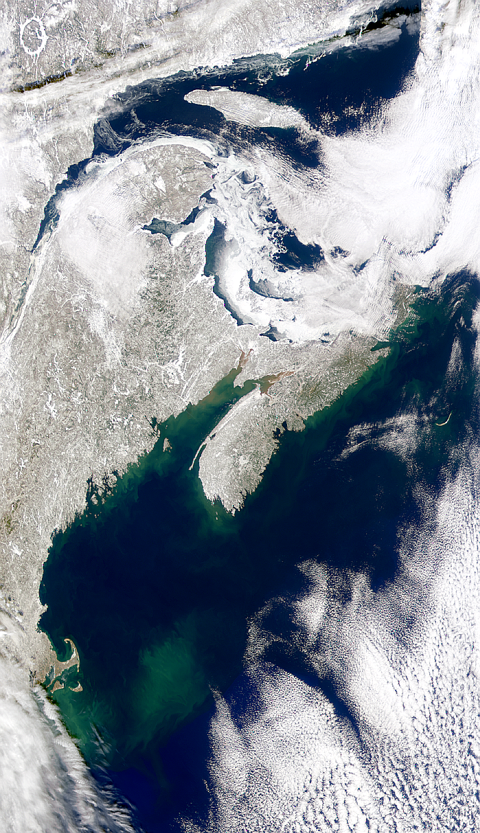 Gulf of Maine and Maritime Canada - related image preview