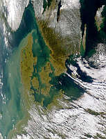 Turbid Waters Around Denmark - selected image