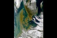 Turbid Waters Around Denmark