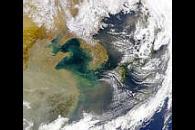 China Sandstorm Aftermath
