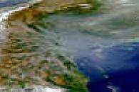 Honduras Smoke