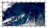 Northeast Pacific Ocean Bloom - selected image