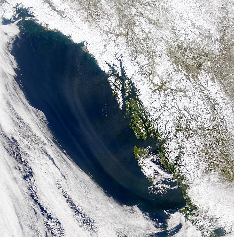 Alexander Archipelago Haze - related image preview
