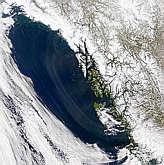 Alexander Archipelago Haze - selected image
