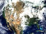 MODIS Surface Reflectance - selected image