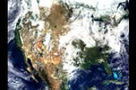 MODIS Surface Reflectance