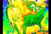 Sea Surface Temperature and Vegetation Index