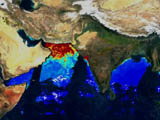 MODIS Chlorophyll from Indian Sub-continent - selected image
