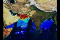 MODIS Chlorophyll from Indian Sub-continent