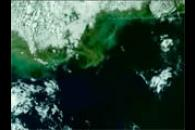 MODIS First Light Overpass N. America East Coast