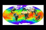 Global Surface Reflectance and Sea Surface Temperature