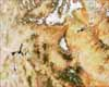 Grand Canyon Seen by MODIS - selected image