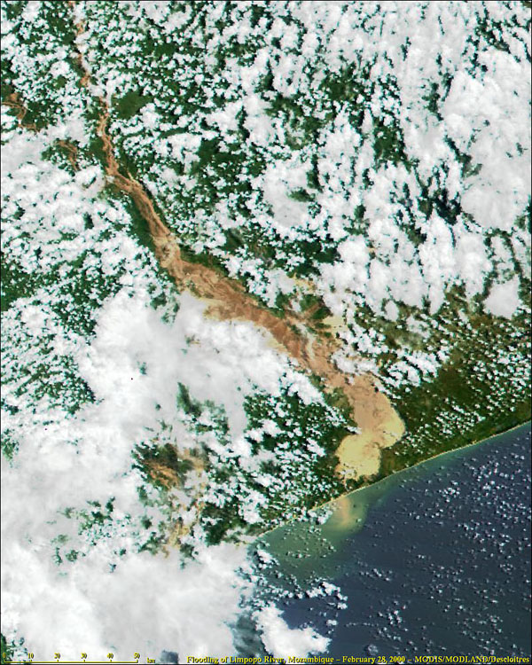 Flooding in Mozambique from MODIS - related image preview