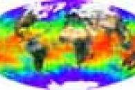 Global Composite of Land Surface Reflectance and Sea Surface Temperature