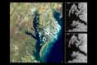 Chesapeake Bay and Delmarva Peninsula Montage with MODIS v. AVHRR Band 2 Resolution Comparison
