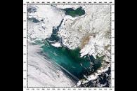 Bering Sea