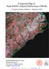 Composite Map of Nadir BRDF-Adjusted Reflectance (NBAR) - Coastal Carolinas, March 5 - March 8, 2000 - selected image