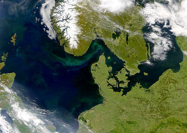 Phytoplankton Blooms in North Sea - related image preview
