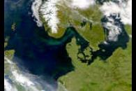 Phytoplankton Blooms in North Sea