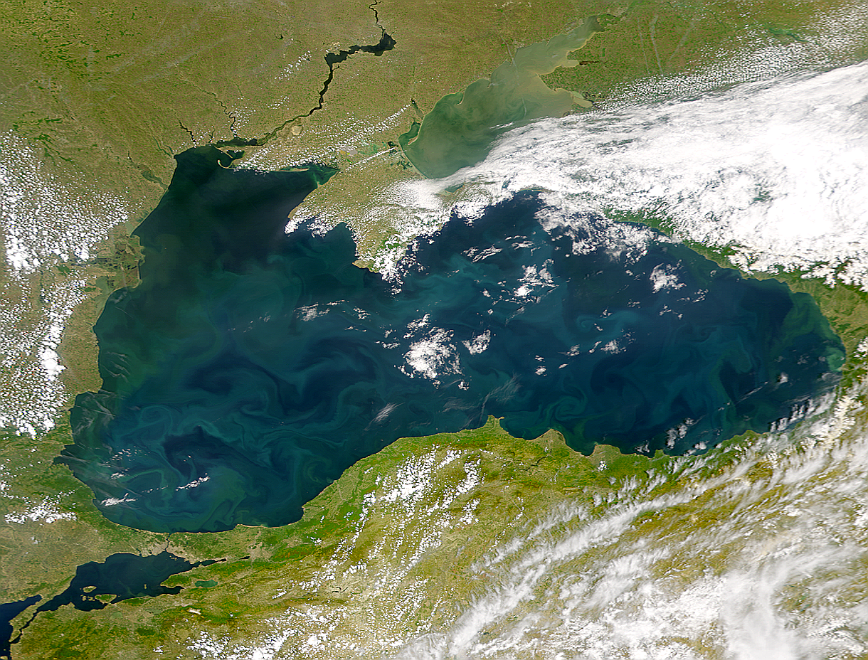 Black Sea Packed with Phytoplankton - related image preview