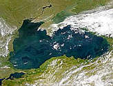 Black Sea Packed with Phytoplankton - selected image