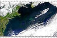 Gulf Stream Eddies