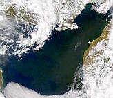 Bloom in Sea of Okhotsk - selected image
