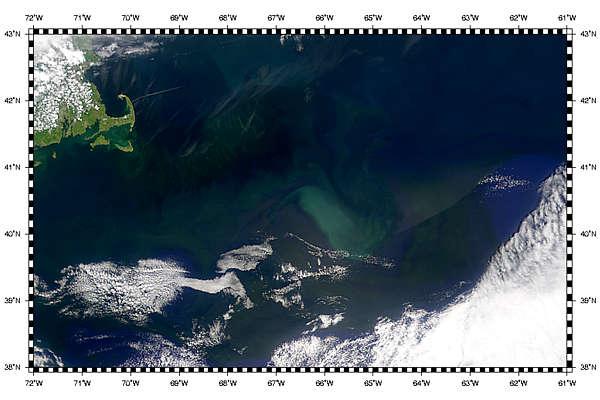 Gulf Stream Eddies Develop - related image preview