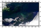 Gulf Stream Eddies Develop - selected image