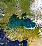 Blooming Black Sea - selected image