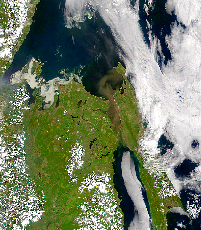 Sediment Flowing from the Amur - related image preview