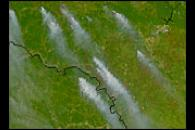Forest Fires in Russia and Northern China