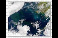 Contrails over Bering Sea