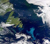 Phytoplankton Bloom off Grand Banks - selected image