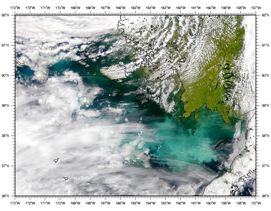 Phytoplankton Bloom in Bering Sea - related image preview