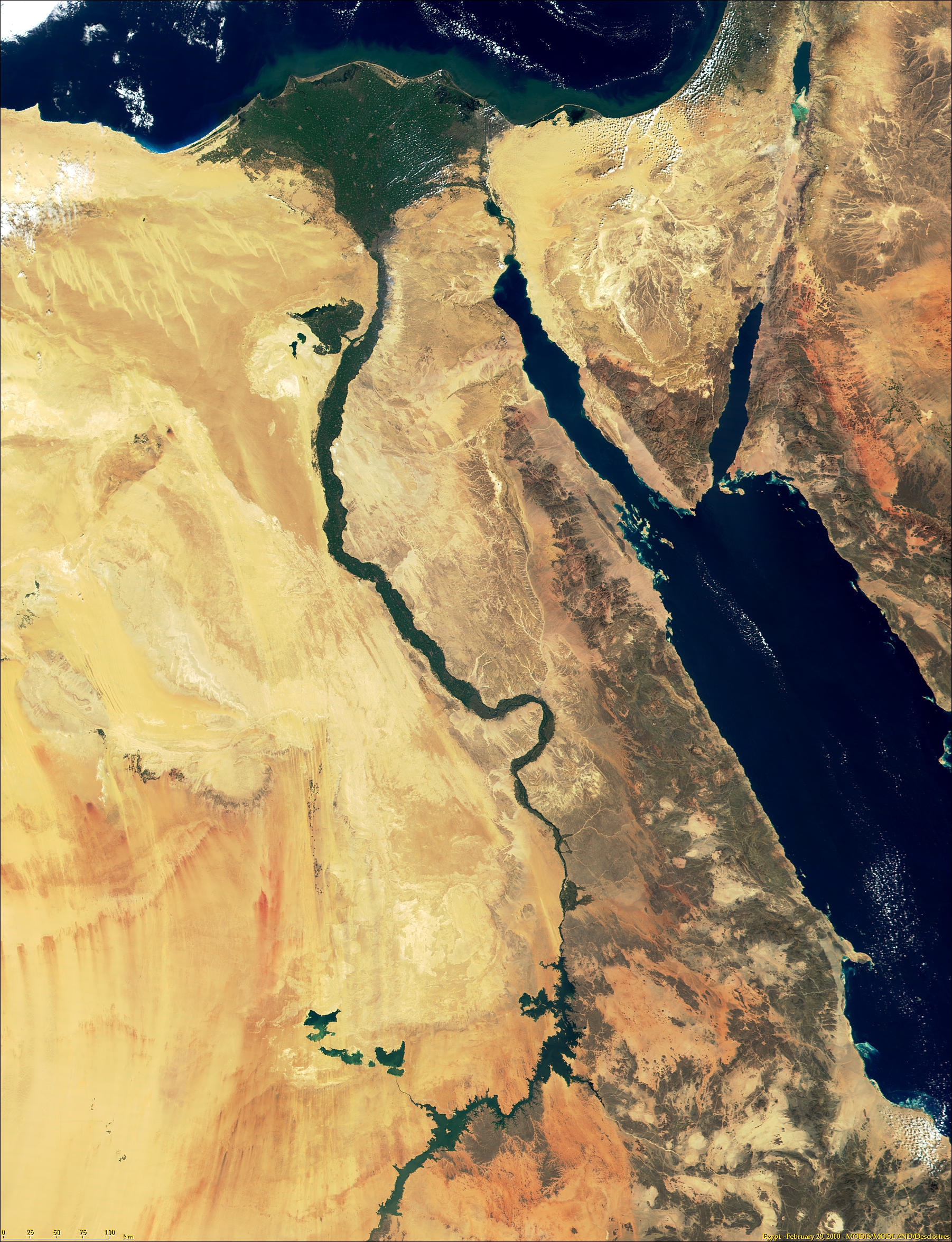 Egypt, Nile Delta and Sinai from MODIS - related image preview
