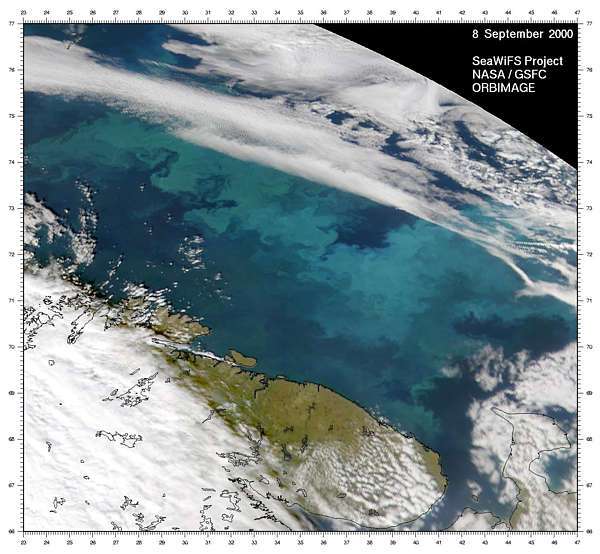 Barents Sea Bloom - related image preview